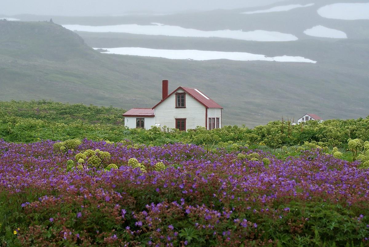 Island - Reisetipps und Reiseberichte - cover