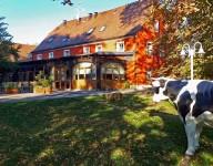 Geheimtipp Oberlausitz - naturnahe Erholung und Genuss in Tautewalde